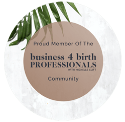 Business 4 Birth Professionals Logo